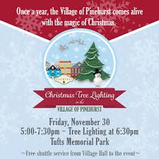 Hurst Tree Lighting