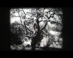 400+ FILM LINKS ideas | film, avant garde film, history of animation