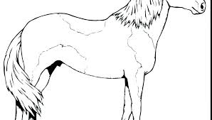 pony horse coloring pages spirit horse coloring pages coloring book pages crayon art free printable coloring