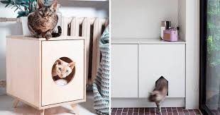 10 Ideas For Hiding Your Cats Litter Box