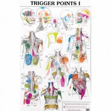 Free Trigger Point Chart Smoulders Trigger Point Charts