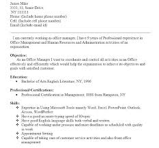 Front Office Executive Resume Sample Office Manager Resume Business ...