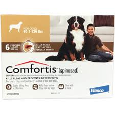 comfortis for dogs reviews. Unique Dogs And Comfortis For Dogs Reviews O