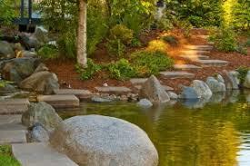 Ponds Eco System
