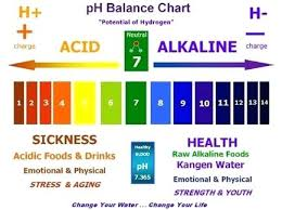 Water Test Chart Water Test Ph Inmotionstudio Com Co
