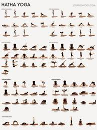 Basic Yoga Poses Chart Yoga For Beginners The First Step Of Yoga Practice Hatha