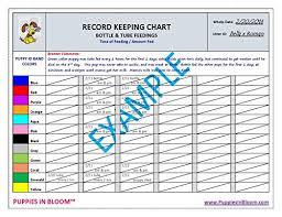 Bottle Feeding Puppy Chart Puppies In Bloom Record Keeping Charts For Breeders Buy