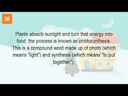 What Is A Synonym For The Word Photosynthesis Youtube