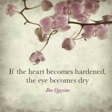 Beautiful Islamic Life Quotes Best Of 24 Beautiful Islamic Quotes Sayings About Life With Pictures