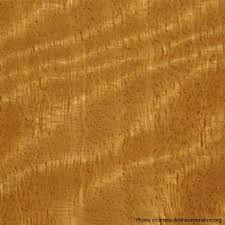 woods used for furniture. 4Satin Wood Woods Used For Furniture F