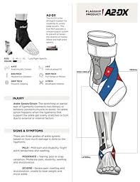 Zamst A2 Dx Size Chart Zamst A2 Dx Strong Support Ankle Brace Buy Online In Uae