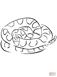 Small Picture Corn Snake coloring page Free Printable Coloring Pages