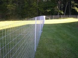 Unique Welded Wire Fence With Gates 9 Image 6 of 20 euglenabiz