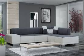 Painted Living Room Furniture Living Room Ottoman Ideas Modern Sectional Sofa With Rustic Coffee