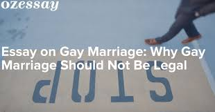 essay on gay marriage why gay marriage should not be legal