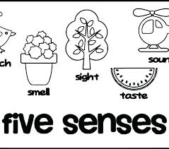 5 Senses Coloring Pages Gyerekpalotainfo