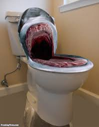 Funny Toilet Seats Jaws Toilet Seat To Trend Colors
