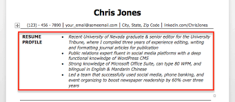 Profile Example For Resume Examples Of Resumes