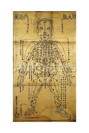 Chinese Acupuncture Chart Printed In Japan