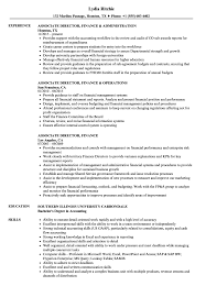 director of finance resume associate director finance resume samples velvet jobs