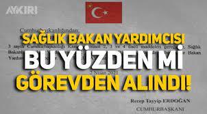 Sağlık Bakan Yardımcısı Emine Alp Meşe pahalı test kitleri yüzünden mi  görevden alındı - Gündem - AYKIRI haber sitesi