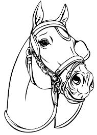 Paardenhoofd Kleurplaat