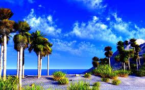 beautiful world nature