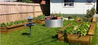 Small Picture Garden Design Garden Design with DIY Raised beds in the vegetable