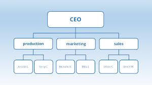 Organizational Structures An Explanation Ionos