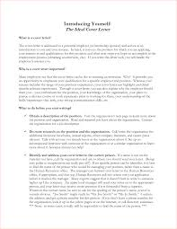 my ideal job lawyer essay sample law application essay law essay