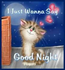 Cute Good Night Quotes New I Just Wanna Say Goodnight Quotes Cute Quote Night Goodnight Good