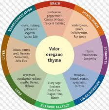 10 Perspicuous Aromatherapy Chart Free