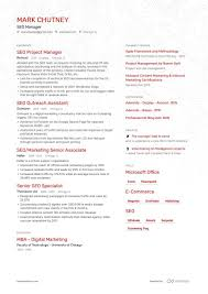 9 Seo Manager Resume Examples Samples For 2019