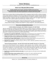 Sample Resume For Business Development Executive In India Best