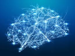 Un proyecto europeo que creará el Google Earth del cerebro | CDE Almería –  Centro de Documentación Europea – Universidad de Almería