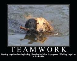 Teamwork Quotes Funny Cool Teamwork Quotes Funny Amazing Its Always About Teamwork 48 Teamwork