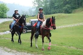 Southern District 4 H Horse Camp
