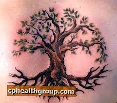Jaký Je Význam Stromových Tetování