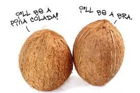 coconut tree essay palm tree n tree coconut tree essay words essay examples palm tree n tree coconut tree essay words essay examples