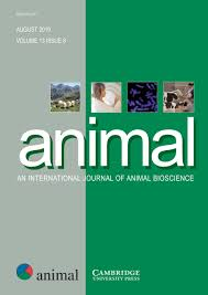 Animal Cambridge Core
