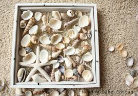 How To Decorate Shadow Boxes Decoration Ideas Astonishing Image Of White Starfish Seashells 55