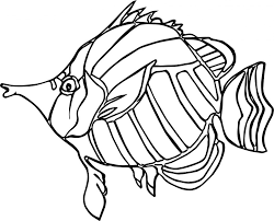 Small Picture Coloring Pages Angelfish Animal Coloring Pages Christmas Angel