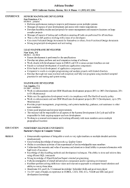 Sample Mainframe Resume Mainframe Developer Resume Samples Velvet Jobs 6