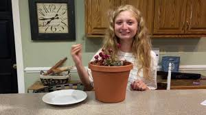 A Funny Dirt Cake with Gummy Worms - YouTube