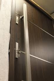 Sofia Stainless Steel Modern Entry Door In Walnut Finish