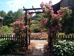 Small Picture Garden Design Bucks County Rose Garden Blog Stone Creek