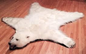 fancy polar bear rug on table and chair inspiration with rugby camp woman reclining on a polar bear rug