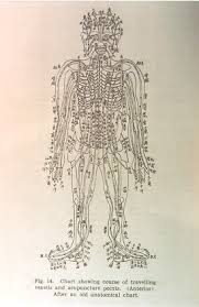 Chi Meridians Chart Technologies Of Qi Yin Yoga Connective Tissue Body