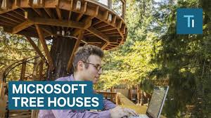 microsoft redmond office. Microsoft\u0027s New Tree Houses Are Office Spaces In The Woods Microsoft Redmond K