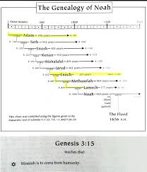 Genealogical Chart Of Before The Flood From Adam To Noah